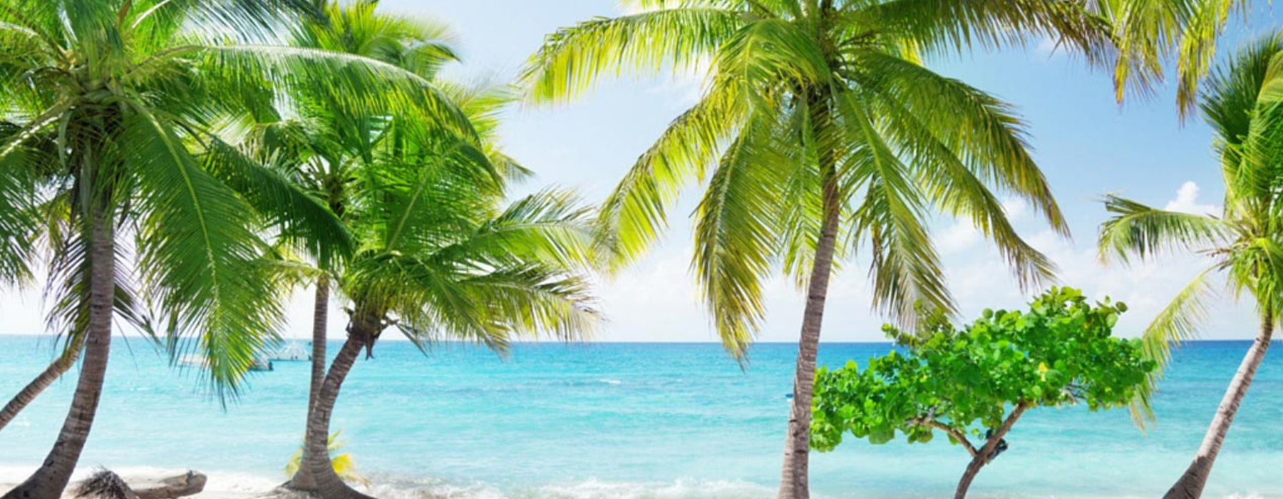 Caribbean Dominican Republic Yacht Charters